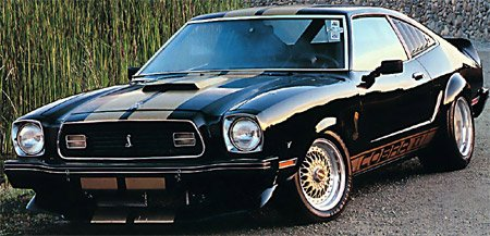 74 78 Mustangs